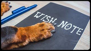 tricky-dog-wish-list-funny-dachshund-video