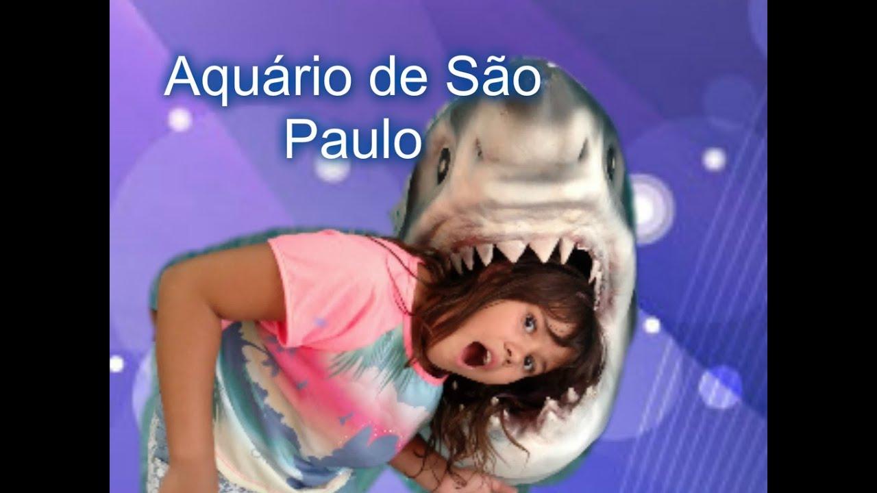 Vlog - Aquario de Sao Paulo - Rebeca Costa Silva - YouTube