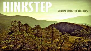 Hinkstep - Sleep Again