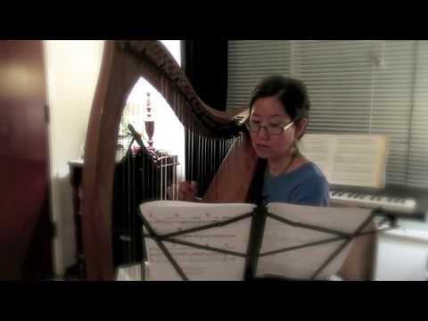 Your Song (Elton John Cover on Celtic Harp)