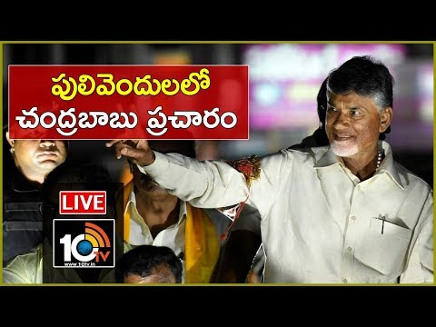 Chandrababu Naidu LIVE | Election Campaigning In Pulivendula | Kadapa | 10TV News
