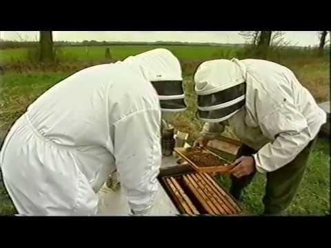 BBC Countrylife