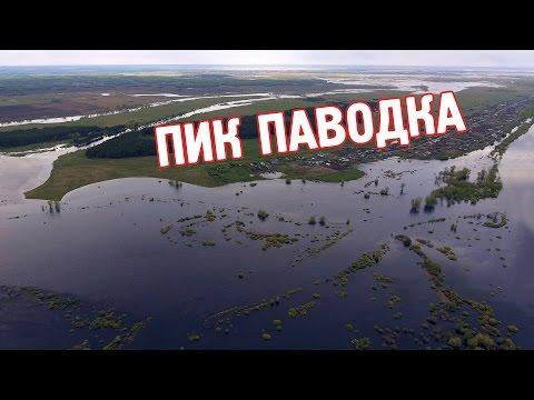 Ситуация на Тоболе Курган Утятское, аэросъёмка, CompactTV, Зауралье Компактно, Курган