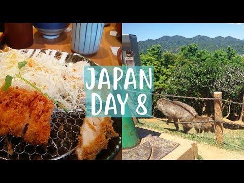 Japan Vlog | Day 8 | Iwatayama Monkey Park!