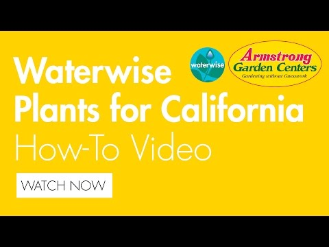 Waterwise Plants For California