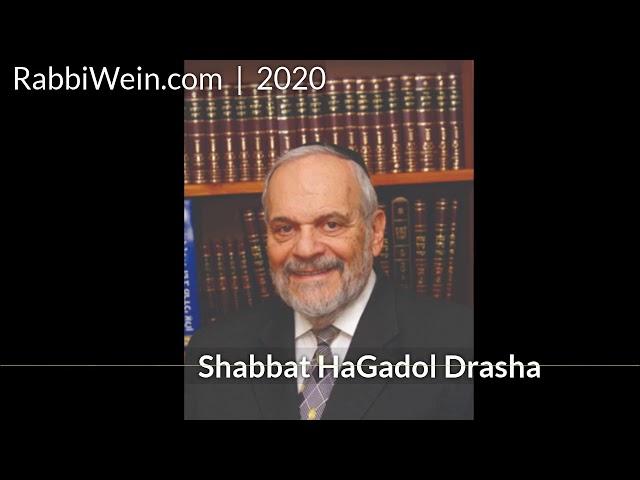 Rabbi Wein Shabbos HaGadol Drasha   2020