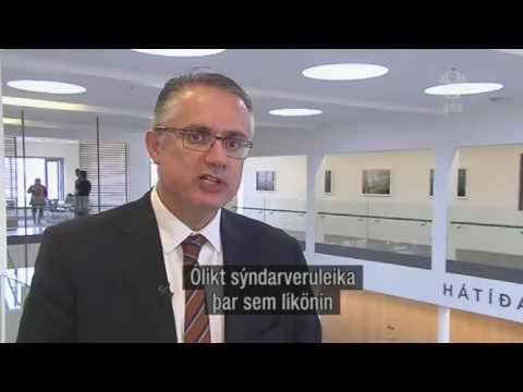 Iceland News - ARTE Project Seminar