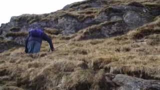 Munros: Gairich