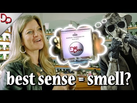 Why You Should Care About How You Smell 👃 | with Sarah Horowitz Parfums