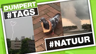 Zo is natoeeerrr! #NATUUR | Dumpert Tags