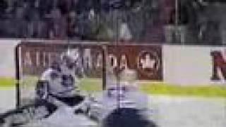 Fallen Leaves - Leafs Suck! Thumbnail