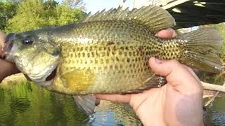 Lure Fishing 6 Small River Jig Fishing for Rock Bass Walleye and Smallmouth Bass