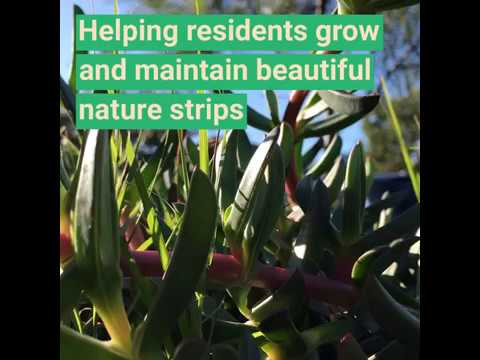 Street Gardens Policy