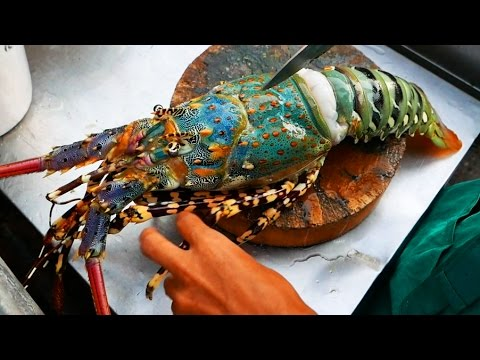 Thailand Street Food – The BIGGEST RAINBOW LOBSTER Cooked with Butter & Cheese