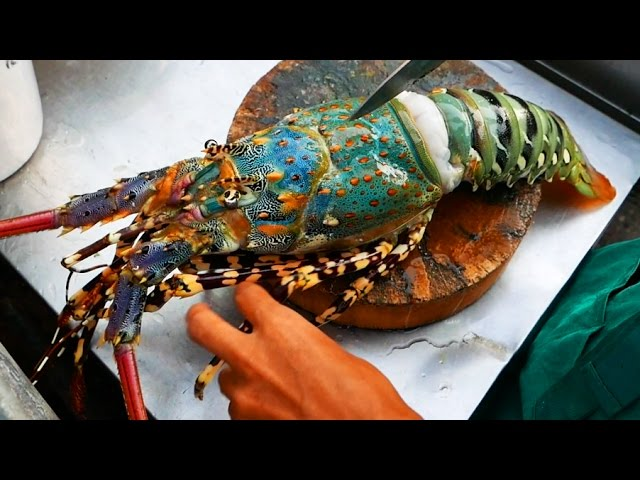Thailand Street Food The BIGGEST RAINBOW LOBSTER Cooked