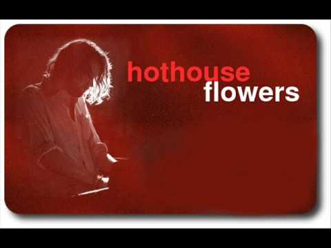 Hothouse Flowers   Good for you