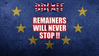 The Remainers Will NEVER Stop!