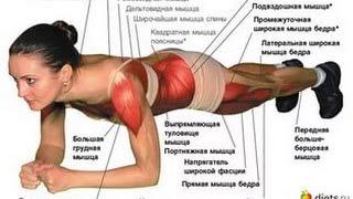 Жиросжигающая тренировка на планках  Упражнение планка