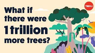 What if there were 1 trillion more trees? - Jean-Franois Bastin
