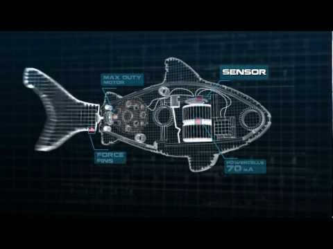 Official Robo Fish Commercial From ZURU