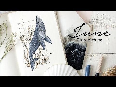 Plan with me | June 2018 Bullet Journal Setup | Magic Under the Sea