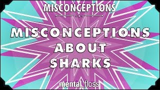 Misconceptions about Sharks - mental_floss on YouTube (Ep. 30)