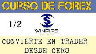 Curso de trading forex básico (gratis) - Parte 1 | Winpips