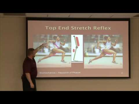 Transfer of Speed Performance Presentation cal dietz Video Part 1
