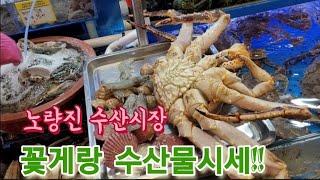 노량진 수산시장 해산물시세
