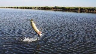Рыбалка в Казахстане на озере