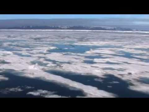 Snow, Water, Ice and Permafrost (SWIPA): The New Arctic Reality