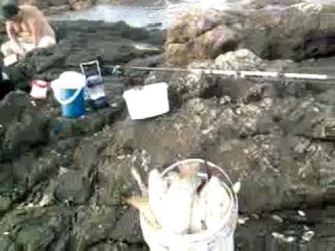 pesca de mingos y roncaderones en punta negra piriapolis! (2)
