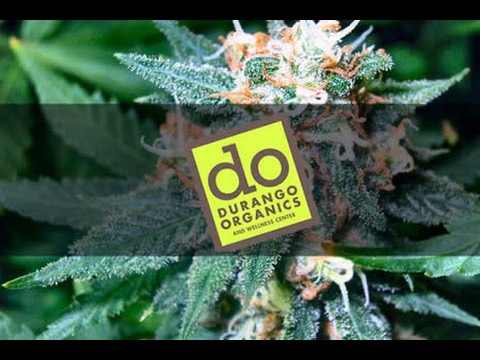 Durango Organics - Black Wolf Review