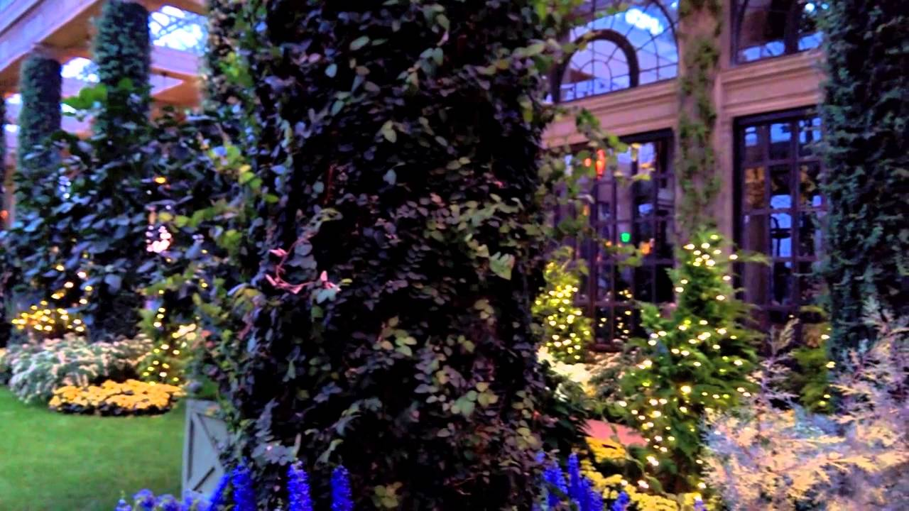 Longwood Gardens Christmas Conservatory 2013 Youtube