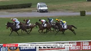 Vidéo de la course PMU PRIX CAMILLE DUBOSCQ