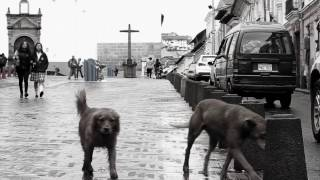 Rio Mira - Adiós Morena (Danilo Arroyo Remix)