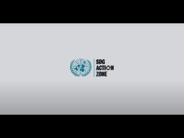 2021 SDG Action Zone Highlights