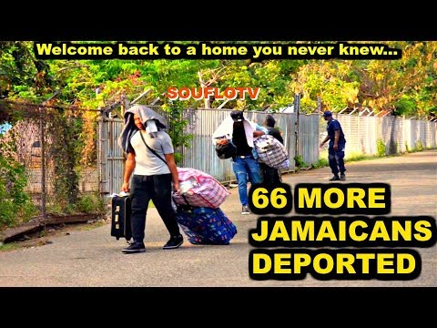 66 more Jamaicans deported from USA land in Jamaica today