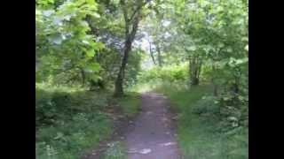 Kippford/Rockcliffe 3 Mile Circular Walk - Dumfries & Galloway, Ecosse
