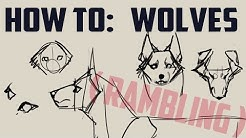 How to draw wolves! -basics- (me rambling)