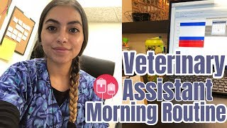 Morning Routine As A Veterinary Assistant