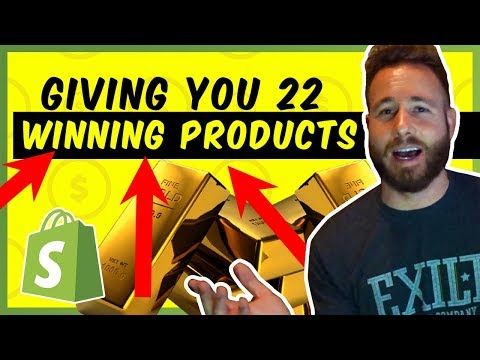 Top 22 Winning Products To Sell Now | Shopify Dropshipping thumbnail