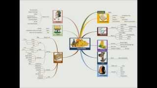 Mind Mapping: How to Create a Mind Map in 4 Steps
