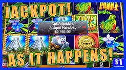 MY JUNGLE WILD JACKPOT HANDPAY and MORE!! ★ HIGH LIMIT SLOT PLAY ➜ HOW JAMES BOND BROUGHT ME LUCK!