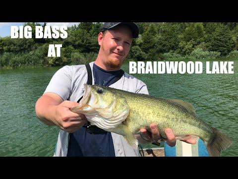 Braidwood Lake IL - Bass Fishing In HOT WATER