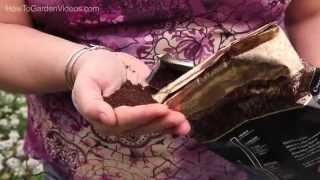 Coffee Grounds in the Garden - Learn about Coffee Grounds in the Garden
