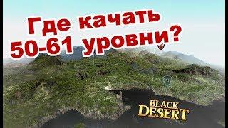 Black Desert (MMORPG) Новая быстрая прокачка 50 61  Карта спотов в BDO