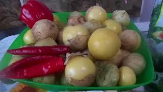 Готовим очень вкусный маринованный овощной физалис на зиму с чесноком, острым и болгарским перцем