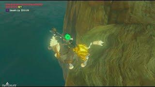Zelda Breath of The Wild: Swimming Class