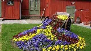 Цветник на даче своими руками: фото и видео